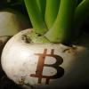 株式市場、仮想通貨市場が相互に学ぶ必要がある点とは?